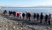 Путешествие к берегу Черного моря